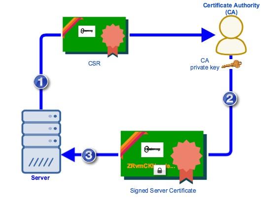 CA Server